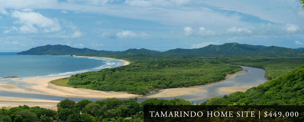 Tamarindo Real Estate